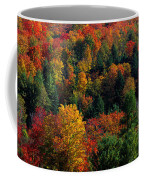 Autumn Leaves Vermont Usa Coffee Mug