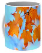 Autumn Light Coffee Mug