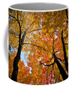 Autumn Maple Trees Coffee Mug