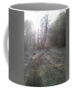 Autumn Morning 5 Coffee Mug by David Stribbling