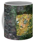 Autumn Naturally Framed Coffee Mug