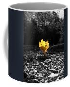 Autumn Oak Isolations Coffee Mug