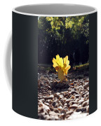 Autumn Oak Coffee Mug