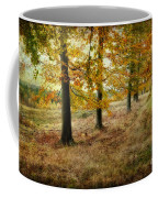Autumn On Cannock Chase Coffee Mug