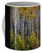 Autumn On Mcclure Pass Coffee Mug