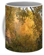 Autumn On The Bosque Coffee Mug