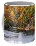 Autumn Palette Coffee Mug