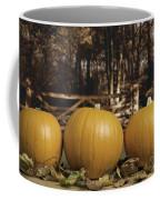 Autumn Pumpkins Coffee Mug by Amanda Elwell