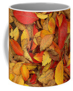 Autumn Remains Coffee Mug