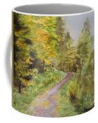 Autumn Riverside Walk Version1 Coffee Mug