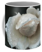 Autumn Roses And Rain Coffee Mug