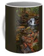 Autumn Streams In Tamworth Coffee Mug