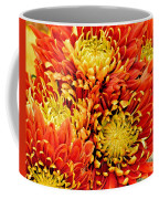 Autumn Sunrise Bouquet Coffee Mug