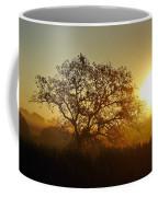Autumn Sunset Coffee Mug