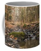 Autumn Tributary Path Coffee Mug