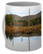 Autumn Wetlands Coffee Mug