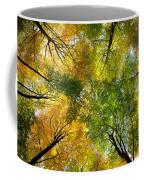 Autumnal Display Coffee Mug