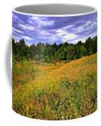 Autumns Brilliance Hdr Coffee Mug