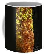 Autumn's Golds Coffee Mug