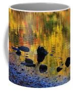 Autumns Rainbow Coffee Mug