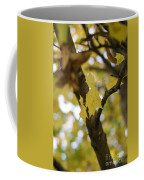 Autumn's Wondrous Colors 1 Coffee Mug