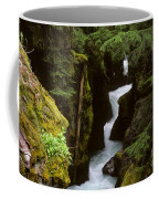 Avalanche Creek Glacier National Park Coffee Mug