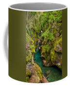 Avalanche Gorge In September Coffee Mug