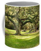 Avery Island Oaks Coffee Mug