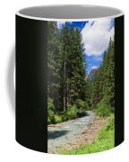 Avisio River Coffee Mug