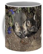 Fox-avoidance Coffee Mug