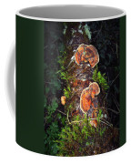 Awe Inspiring Fungi Coffee Mug