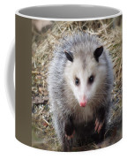 Awesome Possum Coffee Mug