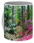 Azaleas Red Maple And Magnolia Trees Coffee Mug