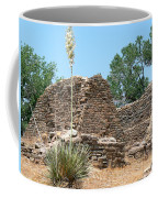 Aztec Ruins National Monument Coffee Mug