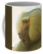 Baboon In The Sun Coffee Mug
