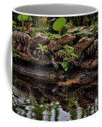 Baby Alligators Reflection Coffee Mug