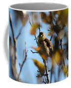 Baby American Goldfinch Learning To Fly Coffee Mug