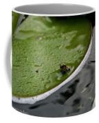 Baby Amphibian Coffee Mug