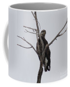 Baby Bald Eagle Coffee Mug