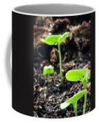 Baby Basil Coffee Mug