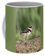 Baby - Bird - Killdeer Coffee Mug
