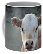 Baby Cow In Colorado Coffee Mug