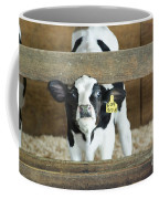 Baby Cow Coffee Mug