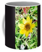Baby Daisy Coffee Mug