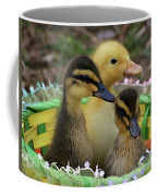 Baby Ducks Coffee Mug
