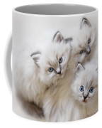Baby Faces Coffee Mug by Lori Deiter