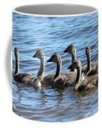Baby Geese Coffee Mug