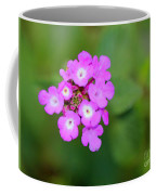 Flower - Baby In Pink Coffee Mug