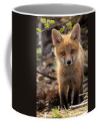Baby In The Wild Coffee Mug by Everet Regal