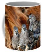 Baby Inca Doves Coffee Mug
